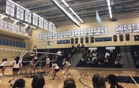 Varsity Volleyball Takes on Valor and a Promising Generation of Eagles is Revealed